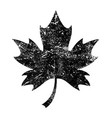 autumn maple leaf logo vector image vector image