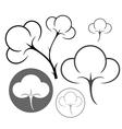 Cotton vector image