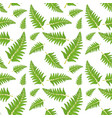 fern leaf seamless pattern vector image vector image