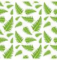 fern leaf seamless pattern vector image