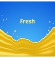 fresh splash vector image vector image
