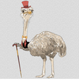 funny Ostrich Bird hipster i vector image