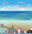 Graphic Of Seashells on a Beach vector image