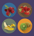 modern flat fruits icons set vector image