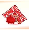 pomegranate still life vector image vector image