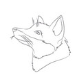 portrait of a fox lines vector image vector image