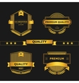 Quality vector image vector image