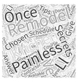 Secrets of a Painless Kitchen Remodel Word Cloud