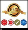 100 percent satisfaction gaurantee vector image