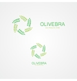 Stylized green leaves logo vector image
