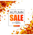 autumn 50 sale promotion card with golden leaves vector image vector image