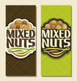 banner for nuts vector image vector image