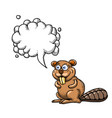 beaver-1000 vector image vector image