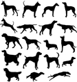 Set of sillhouttes of hunting dogs in point and vector image