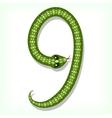 Snake font Digit 9 vector image vector image