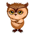 wise brown owl isolated on white background vector image vector image