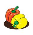 Fresh peppers cartoon vector image