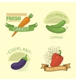 vegetables label template icon vector image