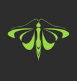 emblem of a green butterfly on a black background vector image vector image