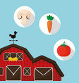 farm vegetables fresh food design vector image vector image