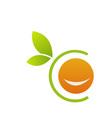 orange logo vector image vector image
