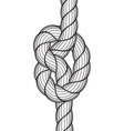 rope knot icon