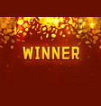 winner in form gold coins vector image vector image