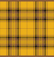 yellow and brown tartan plaid scottish pattern vector image vector image