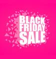 black friday sale vector image vector image