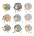 set of cartoon lambs vector image vector image