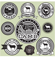 set of labels with Sheep and lamb vector image vector image