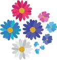 Simple flower daisy collection isolated on white vector image