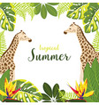 background with giraffe and plants vector image