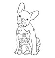 cat and dog line art 06 vector image vector image