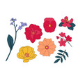 hand drawn flower collection set vector image vector image