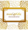 white background with golden marigolds vector image