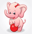 infant pink elephant playing with red ball vector image