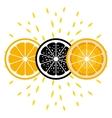 Orange icons In three versions vector image vector image