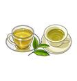 porcelain glass mug saucer sets green tea leaf vector image
