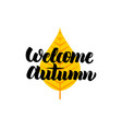 welcome autumn lettering vector image