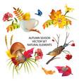 autumn season collection vector image