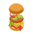 cheeseburger or hamburger ingredients constructor vector image vector image