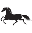 galloping horse vector image vector image
