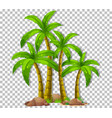 many palm trees on transparent background vector image