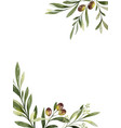 watercolor card olive branches and vector image vector image