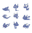 cute cartoon cat in different poses vector image