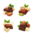 dark chocolate with nuts realistic set vector image