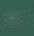dew on a grid of concentric cobweb on green vector image vector image