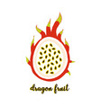 dragon fruit on white vector image vector image