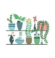 green plants in pots and vases set vector image